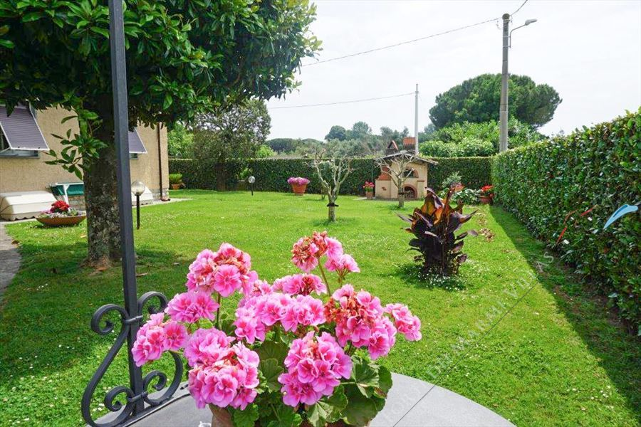 Villa Altais Semi detached villa  to rent  Pietrasanta