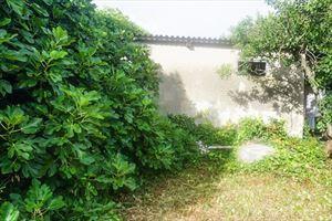 Rustici Lido di Camaiore : Vista esterna