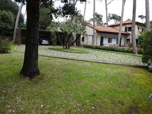 Villa dei Gelsomini  : Giardino