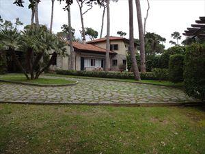 Villa dei Gelsomini : Villa singola Forte dei Marmi