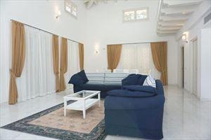 Villa Puccini : Salone