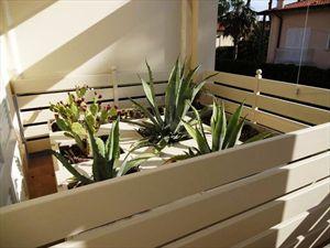 Appartamento Duetto Bis : Outside view