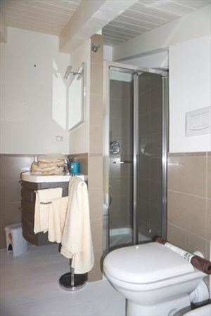 Villa Mozart  : Bathroom with shower