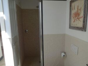 Villa Sting  : Bathroom with shower