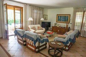 Villa Pietrasantese : Гостиная
