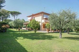 Villa Pietrasantese : detached villa to rent and for sale  Marina di Pietrasanta