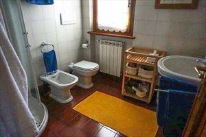 Villa Pietrasantese : Bathroom with shower