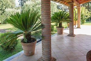 Villa Pietrasantese