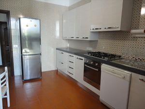 Villa degli Olivi : Kitchen