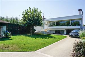 Villa Betulla - Detached villa Seravezza