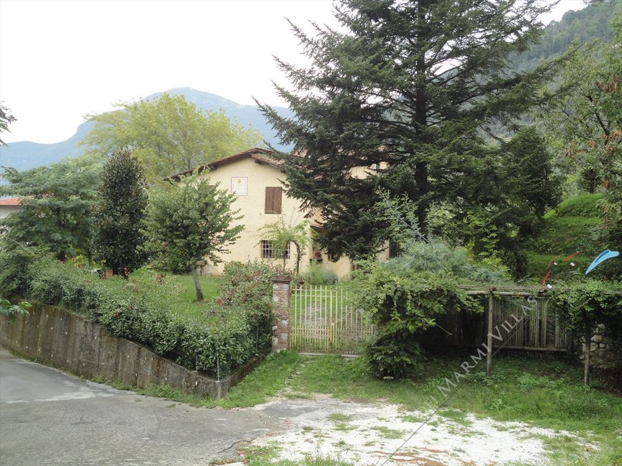 Villa Vigneto Camaiore  : Outside view