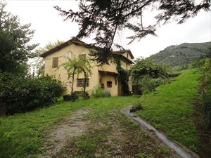Villa Vigneto Camaiore  : Outside view