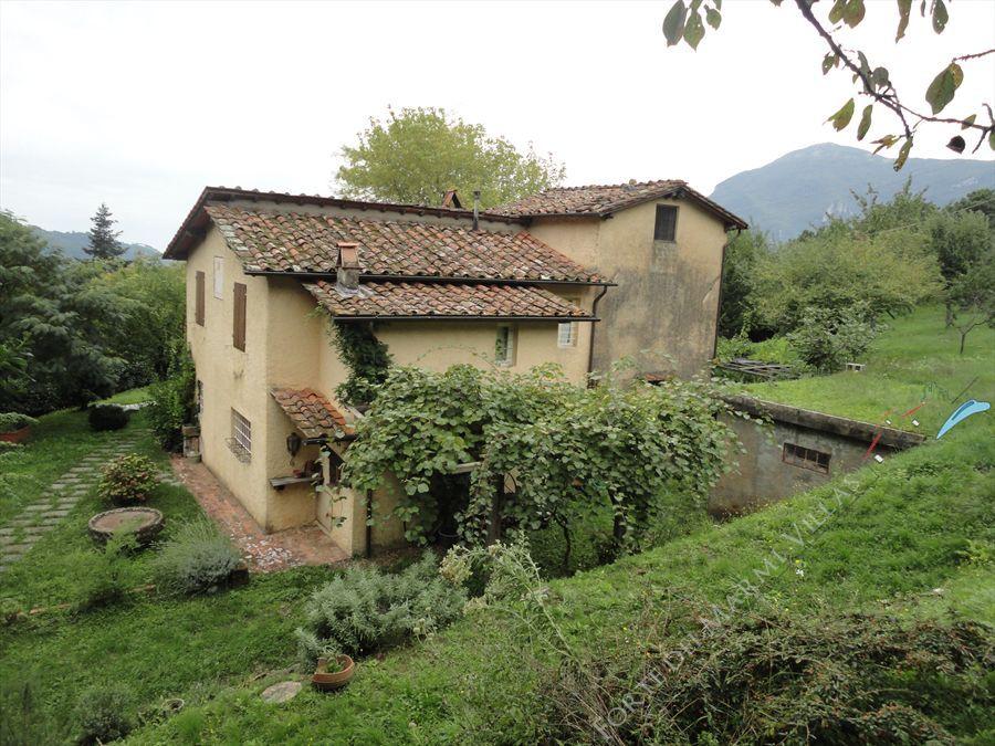 Villa Vigneto Camaiore  detached villa for sale Camaiore