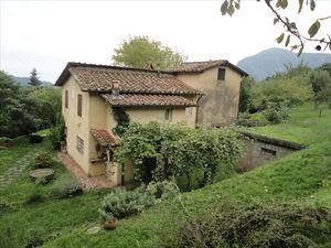 Villa Vigneto Camaiore