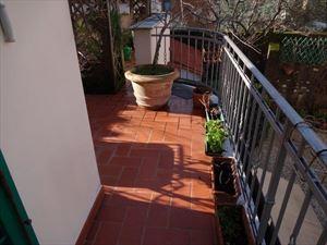 Villa Ambra : Terrace