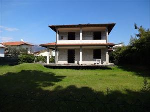 Villa Edhil - Detached villa Forte dei Marmi