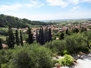 Villa Massarosa: Semi detached villa Massarosa