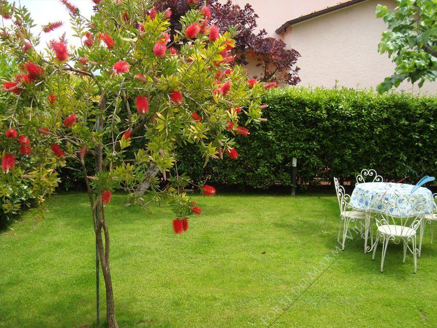 Villa Fiore Rosso   - villa bifamiliare in affitto Forte dei Marmi