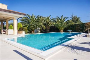 Villa Royal : Swimming pool
