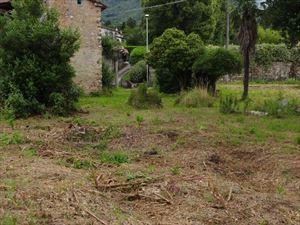 Rustico con parco in esclusiva  : Vista esterna