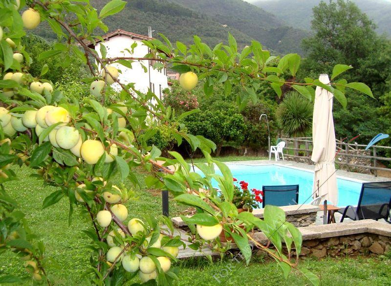 Villa Evelin : Outside view