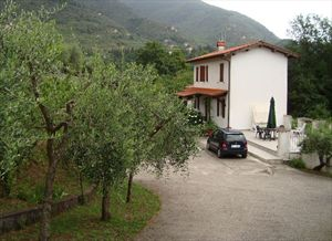 Villa Evelin : Outside view