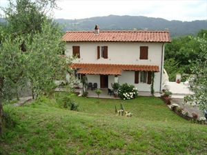 Villa Evelin : semi detached villa to rent Pieve di Camaiore  Camaiore