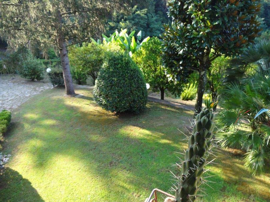 Villa Serendipity : Vista esterna