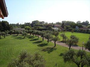 Villa Signora : Garden