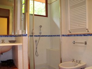 Villa Ronchi : Bathroom with shower