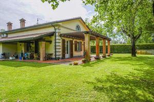 Villa Begonia : Vista esterna