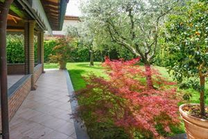 Villa Pietrasantese : Veranda