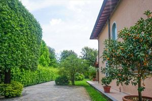 Villa Pietrasantese : Outside view