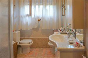 Villa coriandolo bagno con doccia for Bagno san francesco forte dei marmi