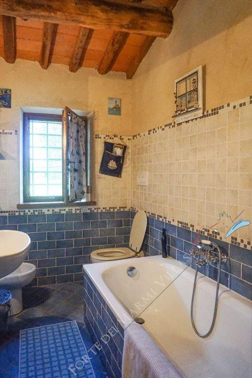 Villa Countryside Pietrasanta : Bathroom with tube