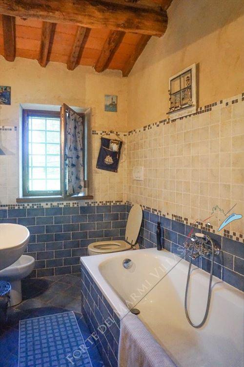 Villa Countryside Pietrasanta : Bagno con vasca
