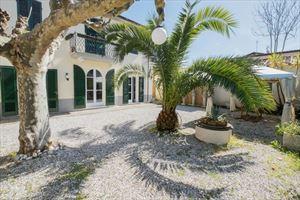 Villa Pegas villa singola in affitto Forte dei Marmi