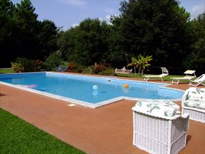 Villa  Ronchi Mare : Swimming pool