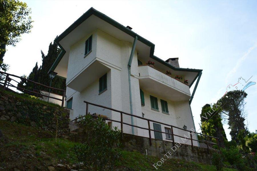 Villa Capriglia - Detached villa Pietrasanta