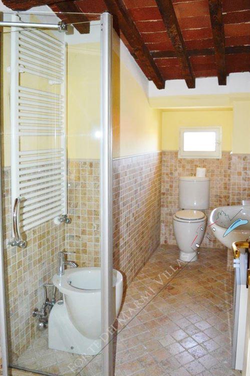 Appartamento Pietrasantese : Bathroom with shower