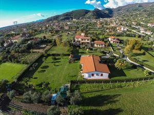 Villa Adelaide : Вид снаружи
