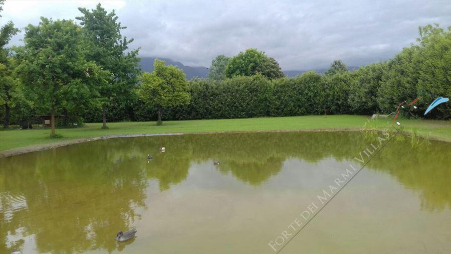 Villa Countryside Pietrasanta : Vista esterna