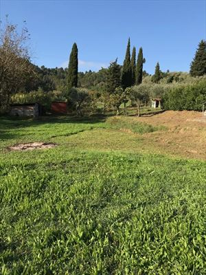 villetta    Camaiore    con parco  : Вид снаружи