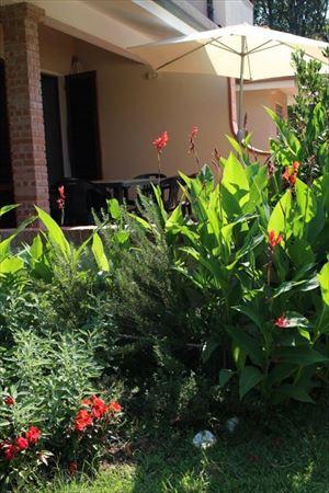 Villa Fiorella    : Vista esterna
