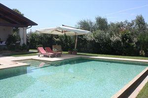 Villa Italia : Piscina