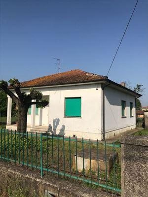 Villa    Campagna  Pietrasanta  : Outside view