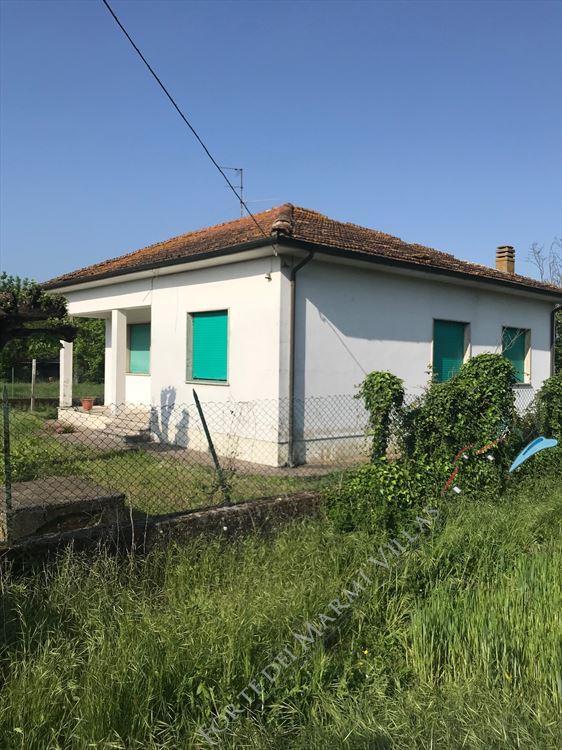 Villa    Campagna  Pietrasanta  : Vista esterna