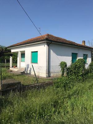 Villa    Campagna  Pietrasanta  : Вид снаружи