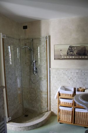 Villa Ciclamino  : Bathroom with shower