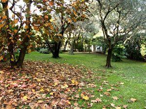 Villa dei Tigli  : Вид снаружи